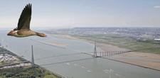 225 pont normandie