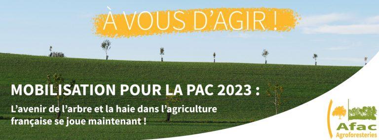 Communiqué de l'AFAC pour l'agroforesterie dans la PAC 2023